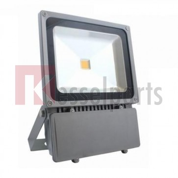 Led buitenlamp 100W Wit